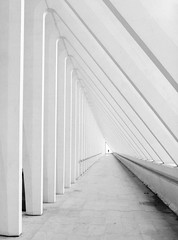 the visitor (aperture one) Tags: lüttich analoguelove architektur building abstrakt city abstract bw belgien stadt gebäude film blackwhite luik structure analogue ilfordhp5plus200 geometry sw filmlove belgium liège filmisnotdead architecture buyfilmnotmegapixels geomtrie filmcommunity analog mamiya645super