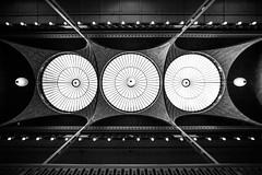 I Know That Space is Not a Race (Thomas Hawk) Tags: america berkeley cal california eastbay hearstminingbuilding photowalk090111 photowalk09012011 uc ucberkeley ucb usa unitedstates unitedstatesofamerica architecture bw fav10 fav25 fav50 fav100