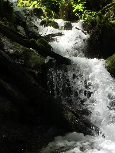 Wahkeena Falls hike,plus
