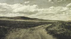 hill road (jssteak) Tags: canon t1i blackandwhite road dirtroad sky clouds hills grassland colorado