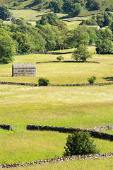 Swaledale (matrobinsonphoto) Tags: swaledale north yorkshire dales national park countryside rural muker landscape outdoors scenery scenic beautiful walls telephoto long lens meadow meadows wildflower hay haymeadows barn barns dry stone drystone valley dale nature natural light