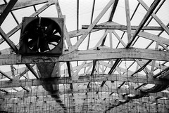 Abandoned Greenhouse [6] (jwbeatty) Tags: analog bw blackwhite blackandwhite canon fan film filmisnotdead greenhouse illinois ishootfilm longgrove ql17giii rangfinder rolleireto80s roof