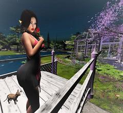 Love is here and Now You're Gone (dulcetkitty) Tags: iconic blueberryxx reign calais love heartbreak beauty landscape mandala jian birdy festival leopard