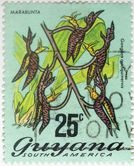 Guyana 25 cents Marabunta