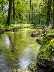 MUC_NymphenburgPark_stream (mvllmr) Tags: nymphenburg bayern bavaria stream water flow summer nature munich