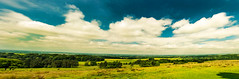 Wide open (Tony Shertila) Tags: 20170617112028 europe britain england cheshire lymm walk nationaltrust pig lyme handley unitedkingdom outdoor scenic nature fields sky clourds europebritainenglandcheshirelymmwalknational trust lymehandley gbr