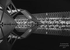 Valencia_Stadt der Künste (b.stanni) Tags: wasser water reflection urlaub idylle licht light outdoor park architektur sommer summer stadt gebäude architecture bw blackandwhite nachtaufnahme spanie valencia