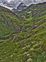 alta Val di Rhêmes e Granta Parey (Andrea Zille) Tags: doradirhêmes valdirhêmes valledirhêmes valdaosta valledaosta cascate falls torrenti torrentidimontagna paesaggidimontagna fotodimontagna