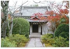Film photography #minolta #analog #film #Japan #travel (jacksonturner_7) Tags: analog film japan travel minolta