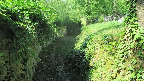 Cesta židovským hřbitovem