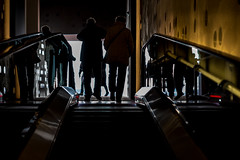 Up-DSC_7089 (thomschphotography3) Tags: hamburg opera stairs shilouettes people colours stairways streetphotography germany
