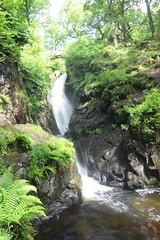 Photo of Aira Force Waterfall Cumbria 0064
