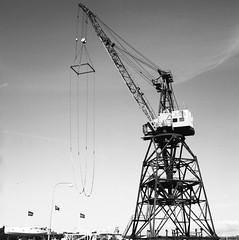 Crane (rotabaga) Tags: sverige sweden svartvitt göteborg gothenburg hisingen lindholmen lomo lomography lubitel166 tmax100 twinlens 6x6 120 mellanformat mediumformat blackandwhite bw bwfp