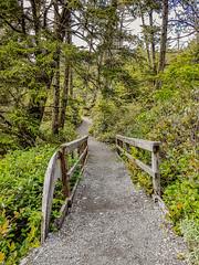 Pacific Rim 20170609_164009 (Heather*987) Tags: 2017 pacificrimnationalparkreserve vancouverisland wildpacificrim