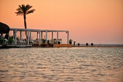 Sunsets By The Beach .. (Hazem Hafez) Tags: sunset coast northcoast sun sea lagoon palmtrees restaurant luxury pink