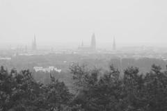 Lübeck in the Fog (Von Noorden her) Tags: lübeck nebel fog foggy skyline tree baum norddeutschland türme turm towers hanse hansestadt