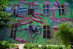 IMGP2649 (Claudio e Lucia Images around the world) Tags: metelkova mesto ljubljana lubiana streetart street graffiti murales tag sigma colors walls fish