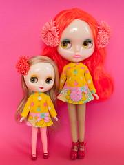 Mod Dress Spam! (Helena / Funny Bunny) Tags: funnybunny solidbackground poppypomegranate nostalgicpop custom reroot rbl blythe amanitamuscariatoadstool nekogutsuzukin middieblythe