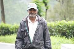 Sri Lanka, tea pickers (5) (walterkolkma) Tags: srilanka tea pickers teapickers centralhighlands nuwaraeliya strathdon teaestates women laborers tamils sonya6300