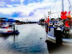 #niendorf #timmendorferstrand #hafen #ostsee #balticsea #harbour #fishermanboat #fischerboot (19privat83) Tags: hafen balticsea fischerboot fishermanboat timmendorferstrand harbour niendorf ostsee