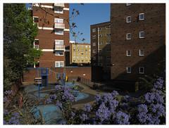 Pimlico, London (dubmill) Tags: dubmill london pimlico victoria 080417