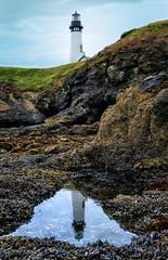 Yaquina Head Lighthouse (Matt Straite Photography) Tags: lighthouse beach coast reflection water sea tide oregon view landscape canon