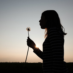 Dandelion (Jens Steidtner) Tags: dandelion flower sunset silhouette girl sun light euskirchen fujifilm x100t outdoors spring family