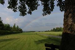Regenbogen (MsAndi63) Tags: regenbogen rainbow ostalb gerstetten canoneos700d natur