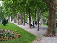 Zrinjevac park north side