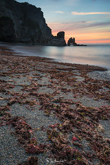 Wroth God (Pablo Moreno Moral) Tags: nikon d810 sea mar wroth iracundo god dios playa beach red rojo gelidium corneum alga sunset atardecer