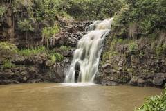 Wailea Falls (erniewelch1323) Tags: ifttt 500px landscape water jungle nature river travel rock tree fall leaf waterfall hawaii cascade stream flow outdoors wet wild tropical oahu wailea falls valley