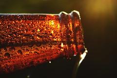 Sundown In Suds Town (Caroline.32) Tags: dripsdropsandsplashes macro macromonday nikond3200 niftyfifty 50mm18 extensiontube20mm beer beerbottle waterdrops sunset