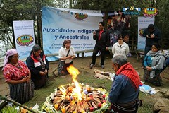 "ceremonia a la previa apertura del XII Congreso de Estudios Mayas 3 • <a style=""font-size:0.8em;"" href=""http://www.flickr.com/photos/141960703@N04/35247493546/"" target=""_blank"">View on Flickr</a>"