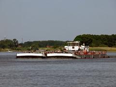 Dettmer Schub 125 (ENI 05603850 (Parchimer) Tags: schubboot pushboat towboat pousseur pchacz duwboot spintore empurradorfluvial binnenschiff tolómotorhajó pushertug elbe hamburg hafen