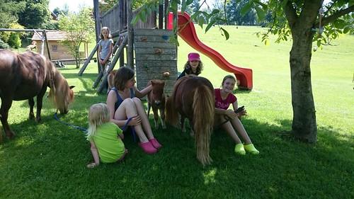 Pony kuscheln 🐎🐴
