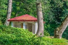 Cottage in the Woods-2 (mushtaqjams) Tags: pakistan rawalakot landscape nature cottage woods trees green ajk kashmir banjosa