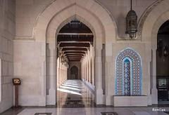 DSC_2446_Muscat (Renzo Cassini) Tags: d7200 moschea