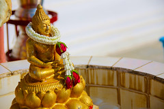 A DI DA PHAT QUAN THE AM BO TAT DAI THE CHI BO TAT GUANYIN KWANYIN BUDDHA 9028 (ketnoivietnam) Tags: 佛 观音 観音 寺 amazing affectionate amitabha architecture art asia avalokitesvara awesome bangkok beautifull beijing palace bhutan bodhisattva bouddha buddha tooth relic temple buddhism buddhist china chinatown chua excellent fantastic flickraward gold golden guanyin hainan hdr history hong kong indian information japan korea kuanim kuanyin kwanyin
