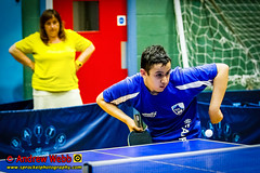 BATTS1706JSSb -447-132 (Sprocket Photography) Tags: batts normanboothcentre oldharlow harlow essex tabletennis sports juniors etta youthsports pingpong tournament bat ball jackpetcheyfoundation