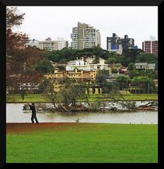 Parque Barigui (walterantoniolivramento) Tags: curitiba paraná brasil parque do papa barigui panoramica torre oi polonia bosque joao paulo ii segundo