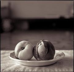 peaches 2 (Wes Pettus) Tags: stillife blackandwhite film hasselblad peaches table blur fruit