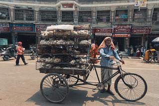The Birdman of Varanasi