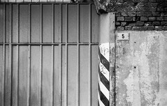 URBANA 21-HR_10_LR (Domenico Cichetti) Tags: analogicait analogico bw monocrome bustoarsizio busto arsizio rodinal film 35mm selfdevelop argentique pellicola blackandwhite blackwhite
