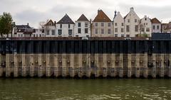 _DSC7715 (durr-architect) Tags: spiegelwaal ruimte room river waal nijmegen netherlands high water flood island bridge nevengeul
