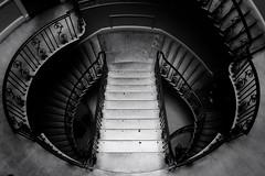Chiaroscuro (Douguerreotype) Tags: uk gb britain british england london city urban bw blackandwhite mono monochrome helix spiral steps stairs architecture shadows vignette
