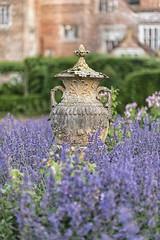In a sea of lavender (David Feuerhelm) Tags: garden urn dof depthoffield plants blue lavender sculpture serene colour colourful colorefex kentwellhall suffolk england nikon d750