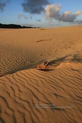Rainbow Beach, Carlo Sandblow - Explore (blauepics) Tags: australia australien queensland qld landscape landschaft clouds wolken sand beach rainbow carlo sandblow düne dune sunrise sun sonnenaufgang morning light morgenlicht pattern muster texture explore