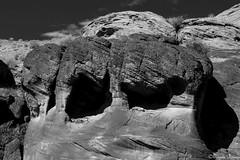 Rock Elephant, Antelope Canyon (Joy Forever) Tags: arizona blackwhite blackandwhite monochrome usa inspired anseladamsinspired america pentax elephant rockformation antelopecanyon page