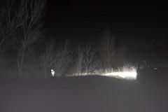 GHOST (BbyConti) Tags: ghost fantome foret nuit noir arbre vegetation voiture lumiere nikon d5300 peur brouillard portrait