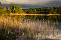 by the lake (ΞSSΞ®®Ξ) Tags: ξssξ®®ξ pentax k5 water lake 2017 hälsingland sweden sverige countryside tree outdoor evening landscape reflection sky sunset smcpentaxda1855mmf3556alwr light